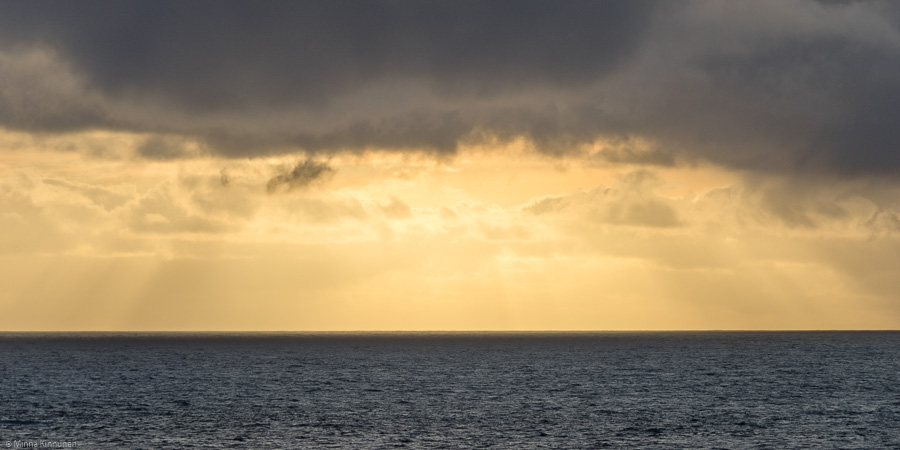 Sunbeams in the horizon