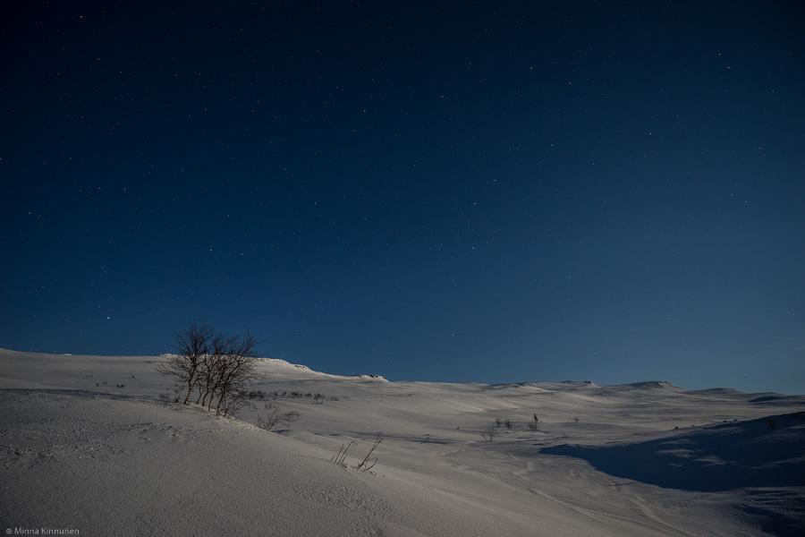 Ånnfjället under the Snow Moon
