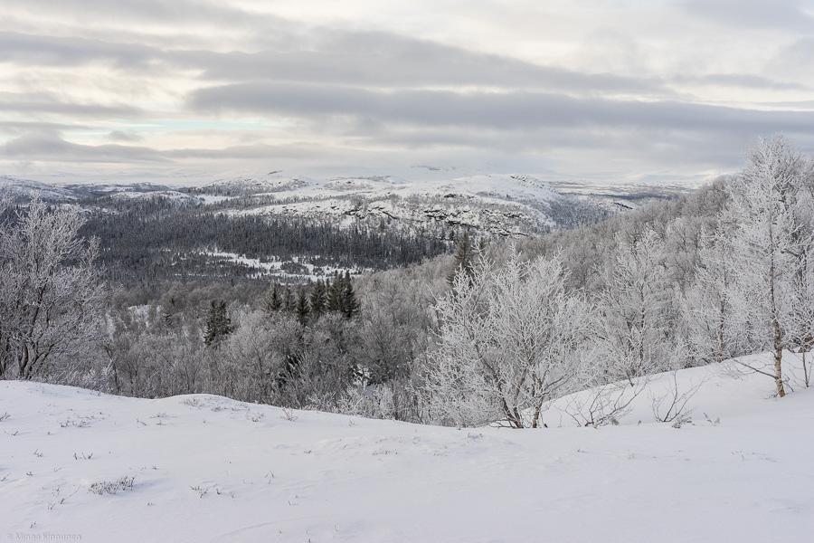 Utsikten när jag kom upp från skogen. Ormruet i mitten.