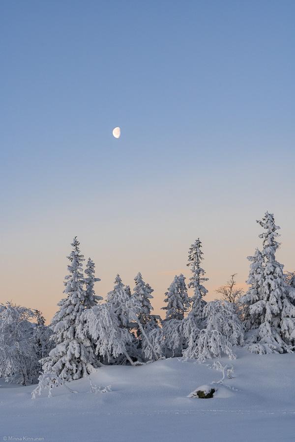 Vinterlandskap och månen
