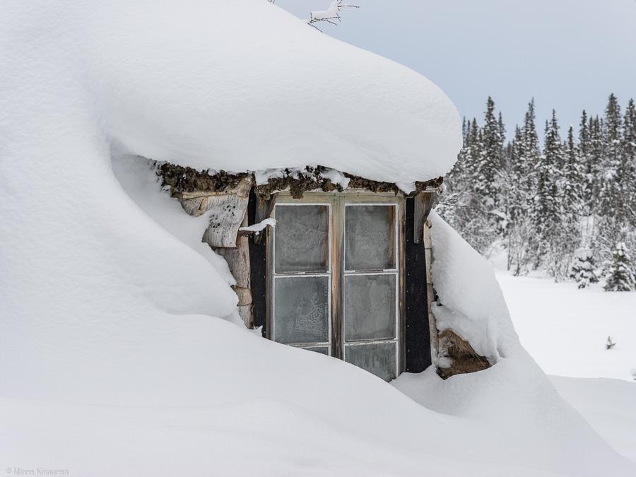 Vinter vid Grönvallen