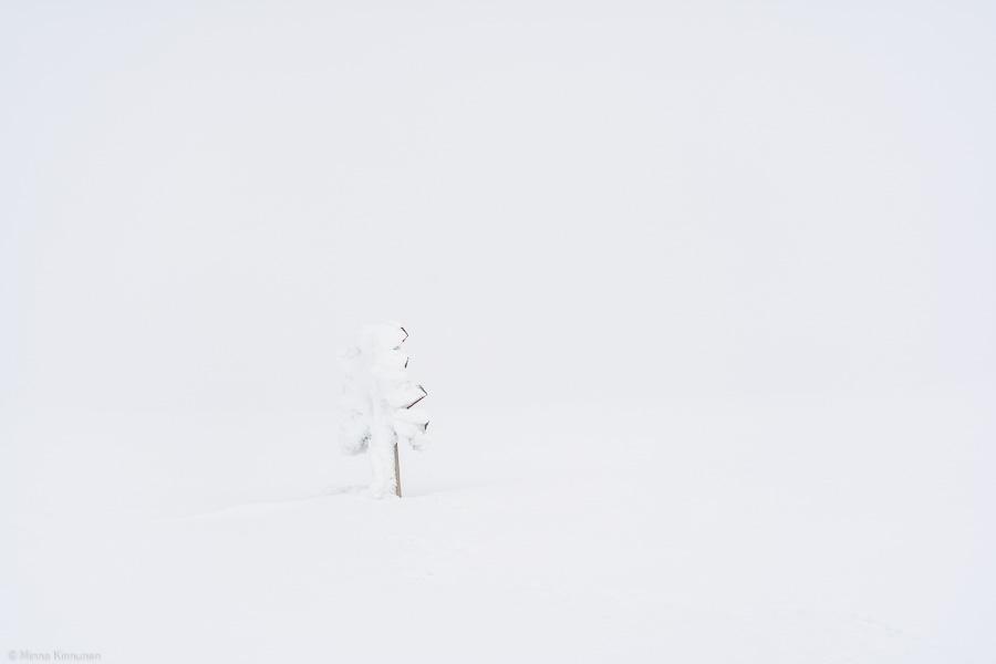 ledkrysset täckt med snö