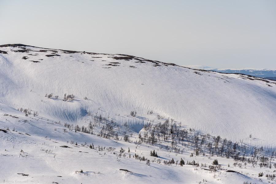 Snön sjunker ihop i värmen